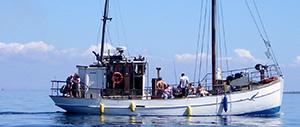 Fisketur på Aabenraa Fjord