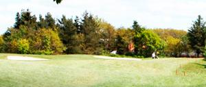 Ribe Golf klub