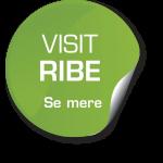 Visit Ribe