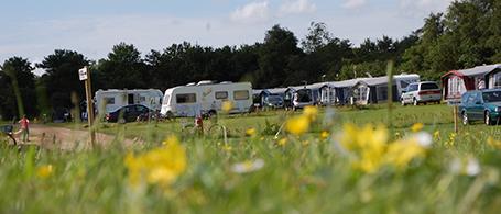 Helårs camping
